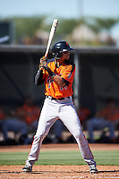 San Francisco Giants Brandon Van Horn (14) during an Instructional League game against the Los Angeles Angels of Anaheim on October 13, 2016 at the Tempe Diablo Stadium Complex in Tempe, Arizona.  (Mike Janes/Four Seam Images)