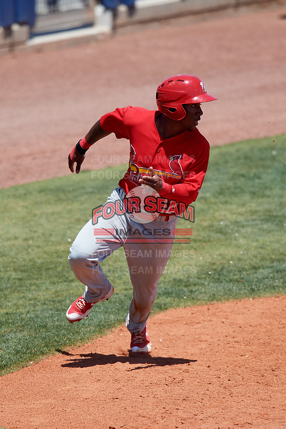 Palm Beach Cardinals second baseman Darren Seferina (12) running the bases during a game against the Charlotte Stone Crabs on April 12, 2017 at Charlotte Sports Park in Port Charlotte, Florida.  Palm Beach defeated Charlotte 8-7 in ten innings.  (Mike Janes/Four Seam Images)
