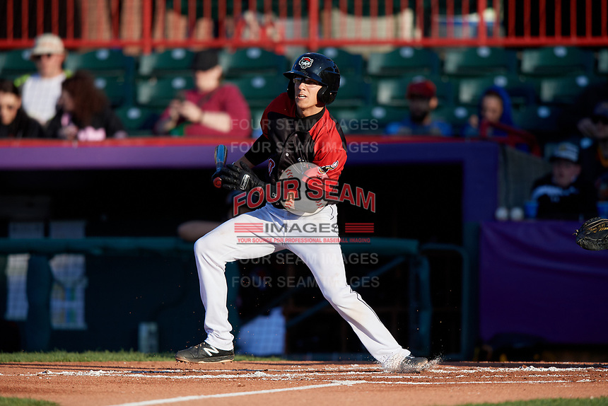 Erie SeaWolves Cole Peterson (10) at bat during an Eastern League game against the Altoona Curve on June 3, 2019 at UPMC Park in Erie, Pennsylvania.  Altoona defeated Erie 9-8.  (Mike Janes/Four Seam Images)