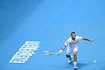 Radek Stepanek (CZE) loses at Australian Open in Melbourne Australia on 17th January 2013