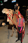"""Juan Buendia and Amara DePaul and a camel set the scene  outside the Children's Museum """"Arabian Nights"""" Gala at The Corinthian Saturday  Oct. 14,2006.(Dave Rossman/For the Chronicle)"""