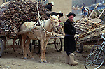Central market, Kashgar, China