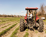 December 30, 2016. Rose Hill, North Carolina.<br /> <br /> John Dunn drives a tractor at Cottles Organics, a farm where he has worked since he was a child.<br />  <br /> John Dunn, age 19, is currently a freshman at NC State University and is the first person in his family to go to college. With a combination of grants, loans, help from his grandfather and weekend farm work, Dunn hopes to find finish college and find a career in agriculture.<br /> <br />  Colleges and universities, which are always trying to pinpoint an under-served and sometimes underprivileged populations of students, have noted a decline in students from rural areas of the country. There are various efforts underway in colleges and universities to identify more of these kids and get them enrolled.