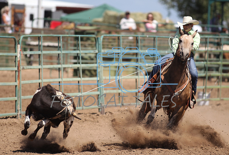 Renee Funk competes in the women's steer stopping event the Minden Ranch Rodeo on Sunday, July 24, 2011, in Gardnerville, Nev. .Photo by Cathleen Allison