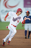 Auburn Doubledays designated hitter Chance Shepard (34) runs the bases during a game against the Connecticut Tigers on August 8, 2017 at Falcon Park in Auburn, New York.  Auburn defeated Connecticut 7-4.  (Mike Janes/Four Seam Images)