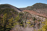 Sandwich Range Wilderness - Mount Passaconaway from Square Ledge in the White Mountains, New Hampshire USA.  This area was logged during the Swift River Railroad era, which was an logging railroad in operation from 1906 - 1916