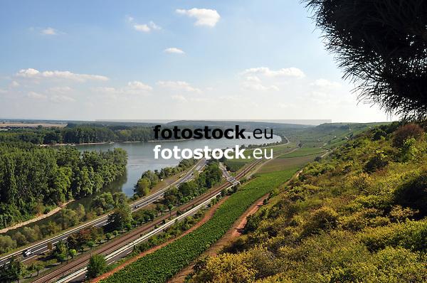 Rheintal mit Blick auf Nierstein, links Rheininsel Kisselwörth, rechts Roter Hang