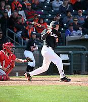 Adley Rutschman - 2019 - Oregon State Beavers (Bill Mitchell)