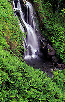 Beautiful cascading waterfall on the lush Hamakua Coast of the Big Island of Hawaii.