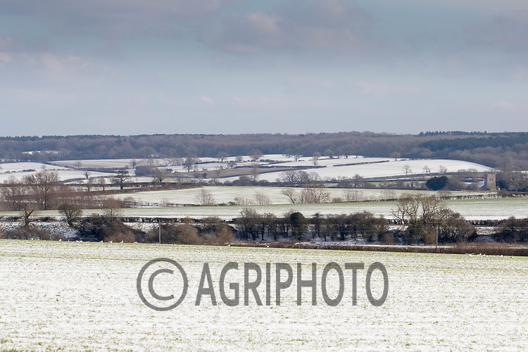 11-2-2021 Snow covered fields in Rutland<br /> ©Tim Scrivener Photographer 07850 303986<br />      ....Covering Agriculture In The UK....