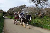 Pferdekutsche auf Insel Sark, Kanalinseln