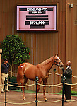 11 September 2011.Hip #104 A.P. Indy - Private Gift filly sold for $775,000.