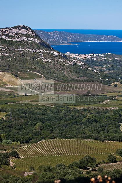 Europe/France/Corse/2B/Haute-Corse/Cap Corse/Env de Saint-Florent: Vignoble de Patrimonio et le golfe de Saint-Florent