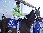 Feb 2010: Age of Humor and Kent Desormeaux before the SilverBulletDay Stakes at the Fairgrounds in New Orleans, La.