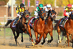 November 3, 2018: Accelerate #14, ridden by Joel Rosario, wins the Breeders' Cup Classic on Breeders' Cup World Championship Saturday at Churchill Downs on November 3, 2018 in Louisville, Kentucky. Wendy Wooley/Eclipse Sportswire/CSM