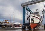 Port Townsend, Boat Haven Marina, yacht Gyrfalcon, on the hard, originally named Patton, US Coast and Geodetic Survey, 1941, HC Hansen, Port of Port Townsend, Olympic Peninsula, Puget Sound, Washington State, Pacific Northwest, USA,