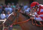 DEL MAR, CA August 11: #1 Instagrand and jockey Drayden Van Dyke cruise home in the Grade II Best Pal Stakes at Del Mar on August 11, 2018 in Del Mar, California (Photo by Chris Crestik/Eclipse Sportswire)