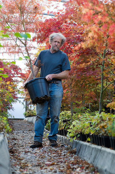 Portraits of Nick working in the Acer Polytunnel