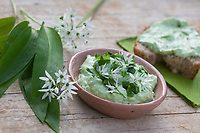 Bärlauch-Quark, Bärlauchquark, Quark mit Bärlauch, Quarkspeise, Kräuterquark, Kräuter-Quark, Bärlauch, Bär-Lauch, Allium ursinum, wild garlic, Ramsons, Wood Garlic, Wood-Garlic, ramsons, buckrams, broad-leaved garlic, curd, curds, Quark, quarg, Herbal quark, quark with herbs, herb curd, L'ail des ours, ail sauvage