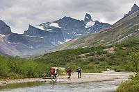 Aiyagomahala Creek, Gates of the Arctic National Park, Alaska