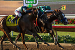 """DEL MAR, CA  AUGUST 24: #7 Catalina Cruiser, ridden by Flavien Prat, and #4 Giant Expectations, ridden by Drayden Van Dyke, battle in in the stretch of the Pat O'Brien Stakes (Grade ll) """"Win and You're In Breeders' Cup Dirt Mile Division"""" on August 23, 2019 at Del Mar Thoroughbred Club in Del Mar, CA.  ( Photo by Casey Phillips/Eclipse Sportswire/CSM)"""