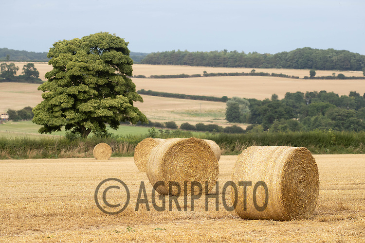 14-8-2021 Round bales of straw in a field in Rutland <br /> ©Tim Scrivener Photographer 07850 303986<br />      ....Covering Agriculture In The UK....