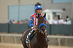 April 12, 2014: #8 Bayern with jockey Gary Stevens aboard after coming in third in the running of the Arkansas Derby at Oaklawn Park in Hot Springs, AR. Justin Manning/ESW/CSM