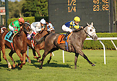 Apple Grove wins the 10th race at Saratoga for trainer Seth Benzel and jockey Julien Leparoux.