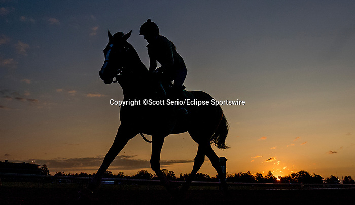 November 1, 2020: Scenes from morning workouts as horses prepare for the 2020 Breeders' Cup at Keeneland Racetrack in Lexington, Kentucky on November 1, 2020.  Scott Serio/Eclipse Sportswire/Breeders Cup /CSM