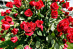 A view of the roses in the winners circle at Churchill Downs in Louisville, Kentucky on May 6, 2006.  Barbaro, ridden by Edgar Prado, won the 132nd Kentucky Derby in the tenth race of the day....