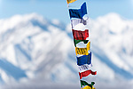 Buddist prayer flags fluttering with the Himalayas in the background. Leh, Ladadh, India.