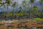 Napoopoo Park, Big Island, Hawaii. Jan. 2015. Photo by Thierry Gourjon.