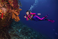 10 June 2014: SCUBA Diver Sally Herschorn explores the reef at Sand Hole, on the North Shore of Grand Cayman Island. Located in the British West Indies in the Caribbean, the Cayman Islands are renowned for excellent scuba diving, snorkeling, beaches and banking.  Mandatory Credit: Ed Wolfstein Photo *** RAW (NEF) Image File Available ***