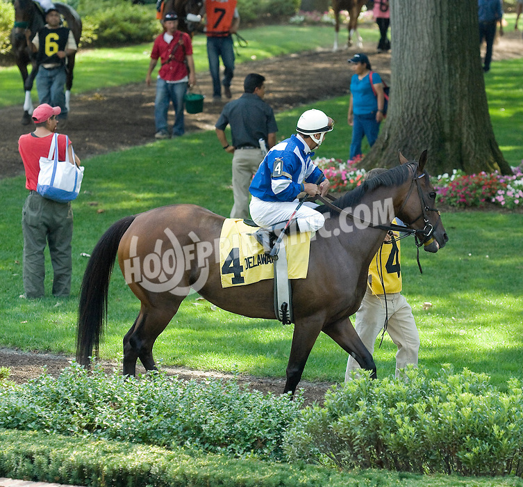 Fareena in the paddock before The Light Hearted Stakes at Delaware Park on 8/7/10