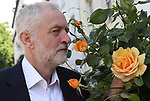 "Pic Shows: Tuesday 13th June <br /> <br /> Everything coming up roses<br /> <br /> Jeremy Corbyn in fabulous mood today as he left his home in Islington<br /> <br /> He even stopped to smell the yellow roses that bloomed in his front garden.<br /> <br /> ""Aren't they beautiful these roses? And such a glorious day.""<br /> <br /> <br /> <br /> Pic by Gavin Rodgers/Pixel 8000 Ltd"