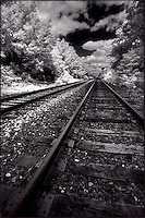Railroad tracks and summer sky<br />