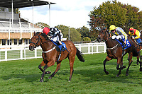 Winner of The Consign With Byerley Stud Handicap (Div 1)     The Kings Steed (left) ridden by Kieran Shoemark and trained by Shaun Lycett during Horse Racing at Salisbury Racecourse on 1st October 2020