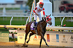 February 21, 2015: International Star with Miguel Mena up wins the Risen Star Stakes at the New Orleans Fairgrounds Risen Star Stakes Day. Steve Dalmado/ESW/CSM