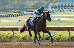 DEL MAR, CA  AUGUST 7:  #3 Pappacap, ridden by Joe Bravo, in the stretch of the Best Pal Stakes (Grade ll) on August 7, 2021 at Del Mar Thoroughbred Club in Del Mar, CA.(Photo by Casey Phillips/Eclipse Sportswire/CSM)