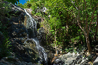 Reef Bay Waterfall<br />