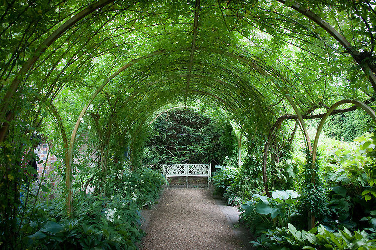 The rose arch of the Cloister Walk at Clinton Lodge Garden, Fletching, East Sussex, mid June.