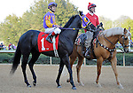 Archarcharch, ridden by Jon Court, in the post parade before the grade 2 Rebel Stakes for three year olds on March 19, 2011 at Oaklawn Park in Hot Springs, Arkansas.  (Bob Mayberger/Eclipse Sportswire)