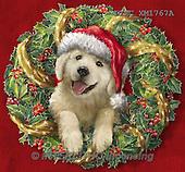 Marcello, CHRISTMAS ANIMALS, WEIHNACHTEN TIERE, NAVIDAD ANIMALES, paintings+++++,ITMCXM1767A,#XA# ,dogs,puppies ,christmas wreath