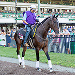 JULY 17, 2021: Lava Man as leead pony, at Monmouth Park in Oceanport, NJ.  Sue Kawczynski/Eclipse Sportswire/CSM