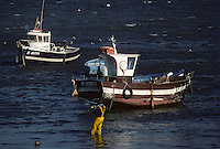 Europe/France/Bretagne/56/Morbihan/Presqu'île de Quiberon/Portivy: Bateaux de pêche et pêcheurs