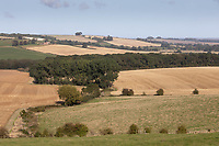 17.9.2020 Lincolnshire Wolds.<br /> ©Tim Scrivener Photographer 07850 303986<br />      ....Covering Agriculture In The UK.
