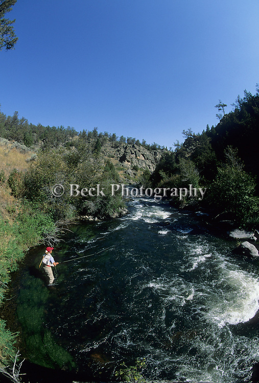 Fly fishing on Willow Creek in MOntana.