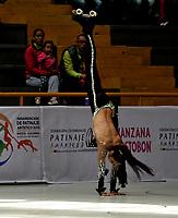 BOGOTÁ - COLOMBIA, 09-09-2018: Consuelo Pérez, deportista de Chile, durante prueba de Danza Libre, Programa Largo, Cadetes Damas, en el Campeonato Panamericano Patinaje Artístico, en el Coliseo El Salitre de la Ciudad de Bogotá. / Consuelo Pérez, sportwoman from Chile, during the Long Program Cadets Ladies Freeskating test, in the Panamerican Figure Skating Championship the El salitre Coliseum in Bogota City. Photo: VizzorImage / Luis Ramirez / Staff.