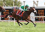 BAYRIR and jockey Christophe P. Lemaire winning the Secretariat Stakes at Arlington Park 8-18-12