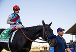 October 02, 2021: Medina Spirit with John Velazquez wins the Awesome Again Stakes at Santa Anita Park in Arcadia, California on October 02, 2021. Evers/Eclipse Sportswire/CSM